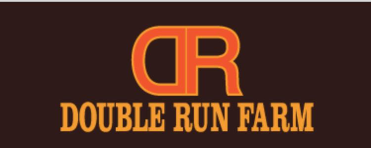 double run sm