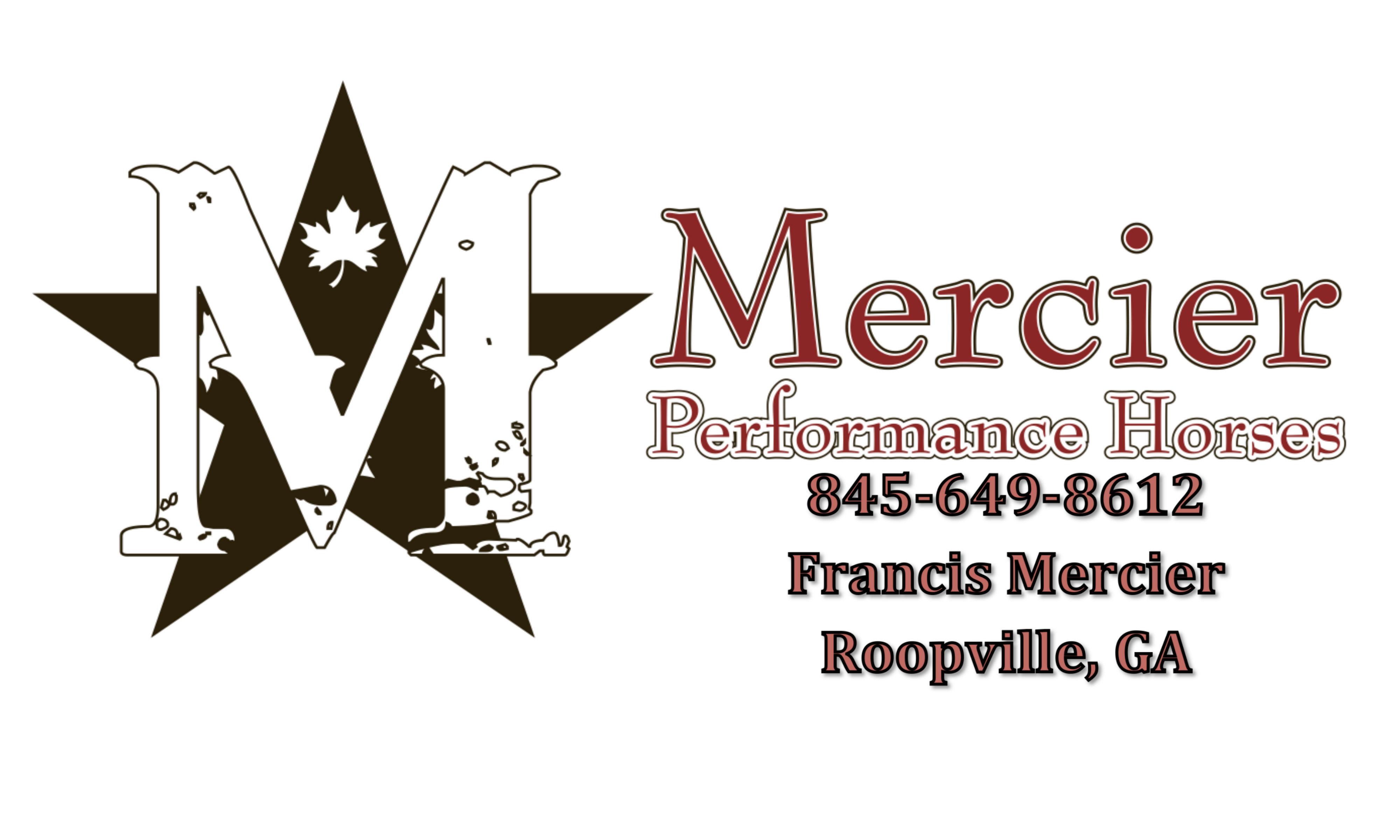 Mercier 3x5 Banner